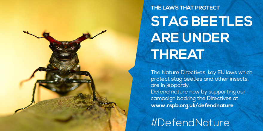 Defend nature by supporting the EU Nature Directives